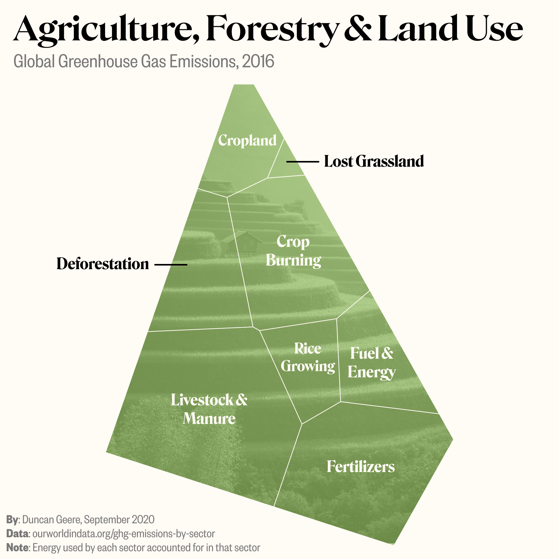 Agriculture, forestry and land use emissions, 2016